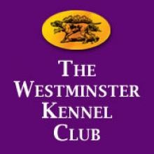 Logo Westminster Kennel Club de Estados Unidos
